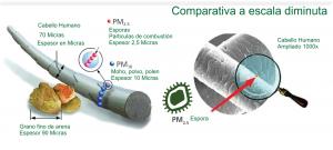 comparativa-escala-espora-c